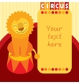Siting smiling lion in circus Place for text vector image