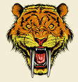 angry sabertooth head vector image vector image