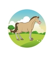 horse cartoon colorful design vector image