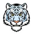 white tiger head logo vector image vector image