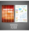 Business infographic flyer for presentation vector image