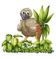 Cartoon Emu vector image vector image