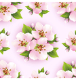 Floral seamless pattern with sakura blossom vector image