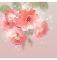 Shining flowers roses vector image vector image