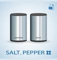 set of salt pepper shakers isolated on a vector image