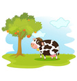 Cow in a field vector image