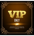 VIP members only Vip persons background Vip club vector image