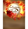Autumn Sale background with copyspace plus EPS10 vector image