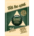 Color vintage irish pub banner vector image