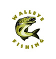 Walleye fish jumping Sander vitreus vector image