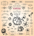 Flowers and Flourishes hand-drawn set vector image vector image