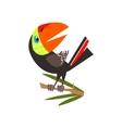 Toucan Sitting On Branch Flat Cartoon vector image