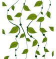 vines pattern vector image
