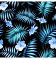 Tropical flower vector image