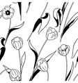 tulip black white vector image