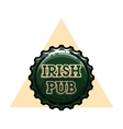 Color vintage irish pub emblem vector image