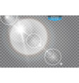 transparent sunlight special lens flare light vector image