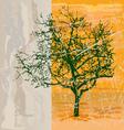 shabby tree vector image vector image