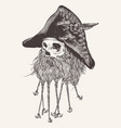 pirate skull with beard vector image