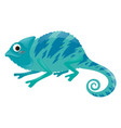 blue iguana on white background vector image
