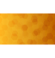 Background with orange and yellow honeycombs vector image
