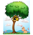 Bird dog and butterflies vector image vector image