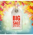 Autumn seasonal sale label eps 10 vector