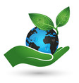 earth in hand symbol of ecology vector image