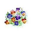watercolor flowers violets and pansy and leaves vector image