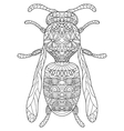 Wasp Coloring for adults vector image