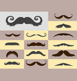 silhouette mustache hair hipster curly vector image