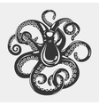Octopus with arms and suction cups on it tentacle vector image