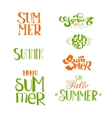 Summer calligraphic designs set vector image