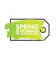 spring sale tag concept in painted brush vector image
