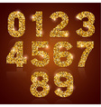 Digits golden vector image