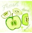 Handdrawn apple vector image