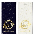 Two vertical ticket for new year special party vector image
