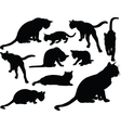 cat collection - vector image