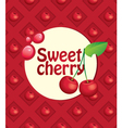 cherry background vector image