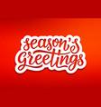 seasons greetings modern typography vector image