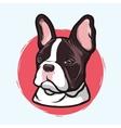 Domestic Dog French Bulldog vector image