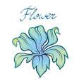 decorative color summer flower linear vector image
