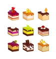 Different fruit cake slices vector image