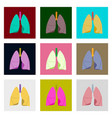 icons set in flat style human organ lungs and vector image