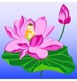 monk on lotus vector image