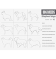 Dog breeds Shepherd dog set icon Flat style vector image