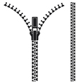 Open zipper vector image