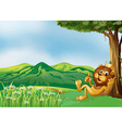 A lion king relaxing at the hilltop vector image vector image