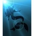 The Mermaid vector image