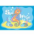 Baby sea horse vector image